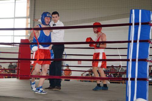 Demonstraţii sportive la Zilele Judeţului Satu Mare