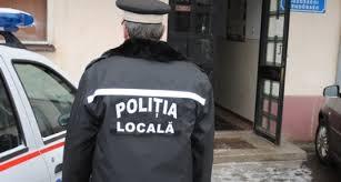 Poliţia Locală Carei trimite 2 echipaje după un cal