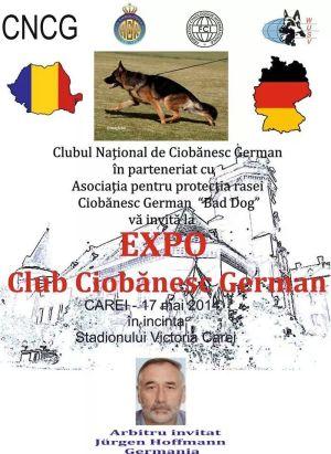 EXPO Club Ciobănesc German la CAREI