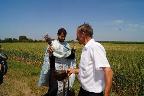 Sfinţirea holdelor de grâu la Marna Nouă