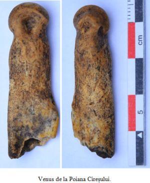 Descoperire arheologică de interes mondial,la  Poiana Cireșului