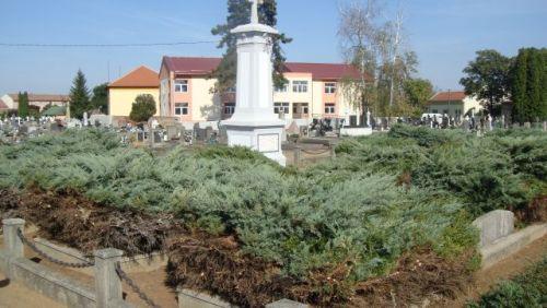 """Cimitirul Eroilor din Carei …""""curăţat""""  în bătaie de joc"""