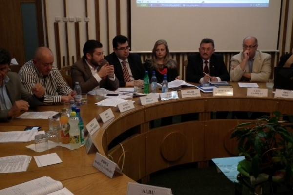 Gata cu afisajul electoral în municipiul Satu Mare