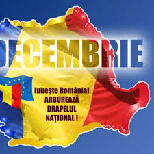 Programul manifestărilor de la Carei de Ziua Naţională a României