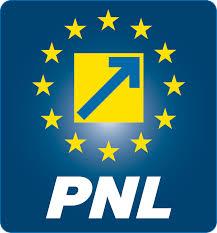 Alegeri la PNL Carei