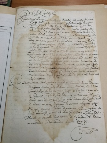 """Afacerea Károlyi"" din secolul XVIII"