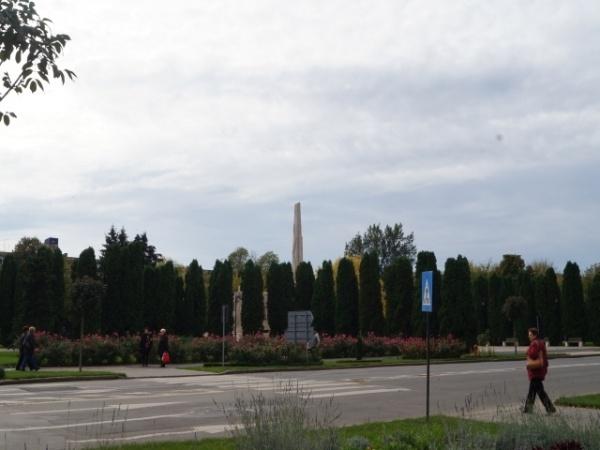 Păreri avizate despre perdeaua forestieră ce maschează Monumentul Ostaşului Român din Carei