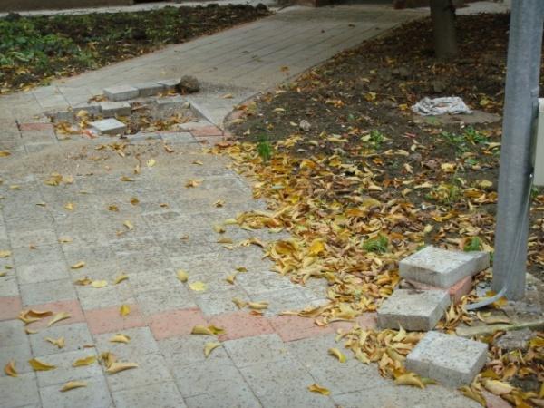 Cititorii semnalează despre. ..condiţiile din cartiere