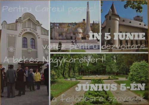 Ipocrizie. Monumentul Ostaşului Român folosit de UDMR Carei în campanie dar refuzat a fi reabilitat şi pus în valoare