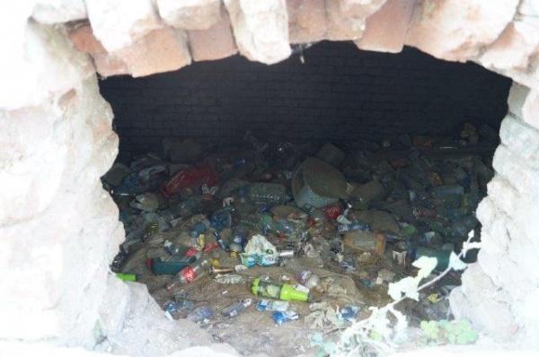 O imagine din Carei de Ziua Curățeniei Naționale