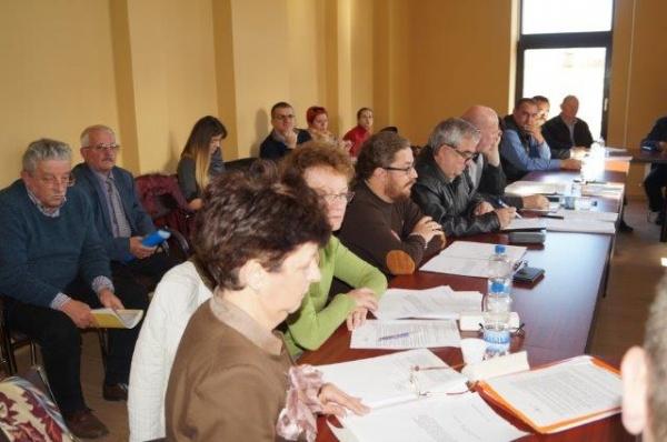 Ședință extraordinară a Consiliului Local Carei