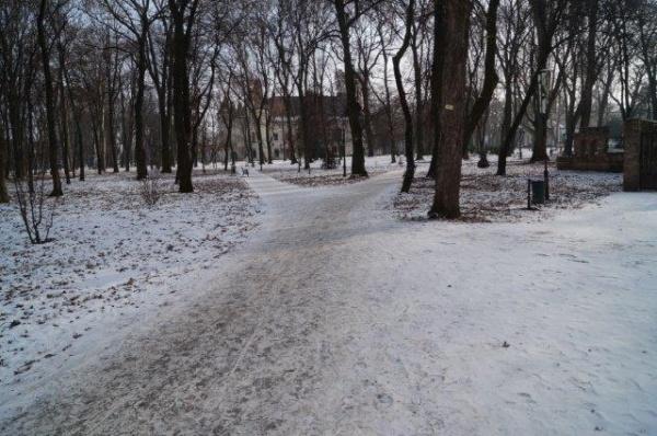 Iarna pe aleile parcului….atenţie la gheţuş