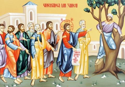 Evanghelia de Duminică: Zaheu sau armonizarea vieţii omului cu Evanghelia