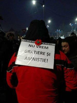 Tinerii din România nu vor grațiere de urgență