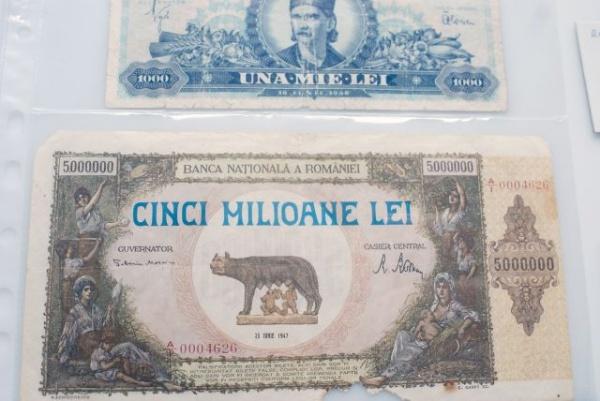 Bani româneşti expuşi la Castelul Karolyi din Carei