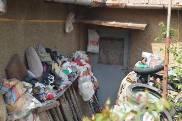 S.O.S. din Carei. Şobolanii colcăie în curţile din jurul casei de pe strada Kogălniceanu nr.42