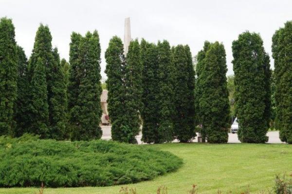 La Carei se camuflează Monumentul Ostașului Român