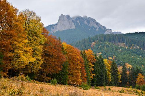 Vă puteţi înscrie la concursurile de turism montan. Prima etapă din acest an are loc în Masivul Ceahlău