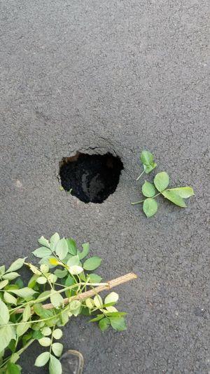 Marea Asfaltare de la Carei dă rateuri! Apar primele cratere în asfalt