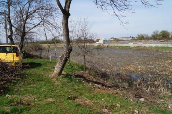 Al cui este terenul de la Somos? Primăria Carei  vrea proiect pe terenuri pe care le deţine provizoriu
