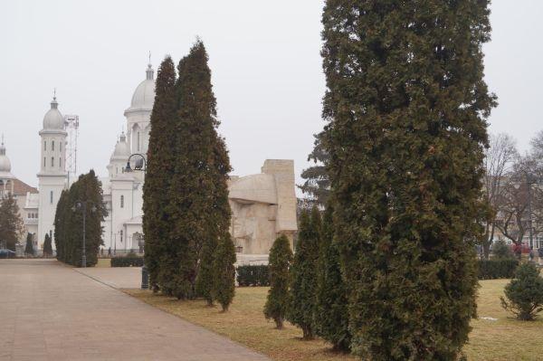 Monumentul Ostaşului Român din Carei este recunoscut ca importanţă de Direcţia judeţeană de Cultură Satu Mare dar rămâne ascuns după perdeaua forestieră