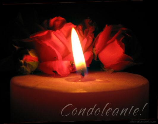 Condoleanţe din partea SC Ardealul SA Carei
