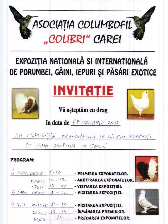 Expoziție Națională și Internațională de porumbei, găini, iepuri și păsări exotice la Carei