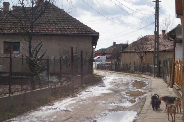 FOTO. Cum se poate circula pe strada Morii din Carei?!