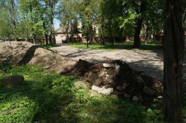 FOTO. Moloz peste flora din Parcul Dendrologic monument istoric din Carei