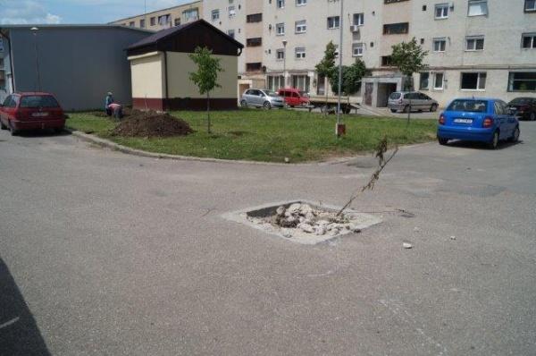 ATENŢIE! Pericol public în cartierul Mihai Viteazu II