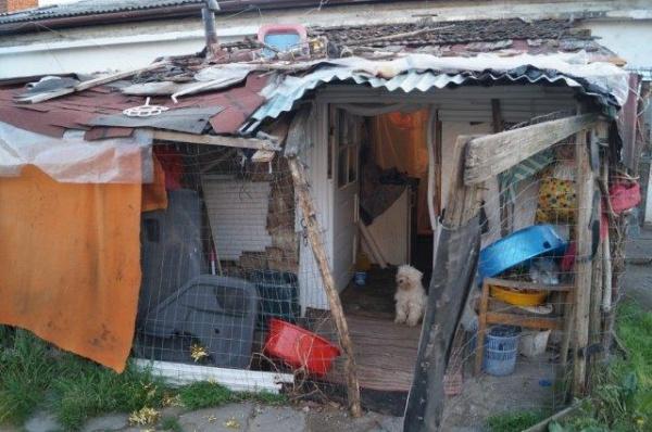 Imagini EXCLUSIVE. Locuinţele sociale din faţa Gării Carei. Copii în plasament