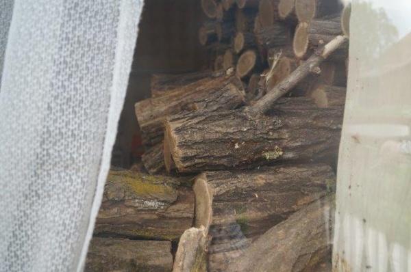 Mită în lemn în județul Satu Mare