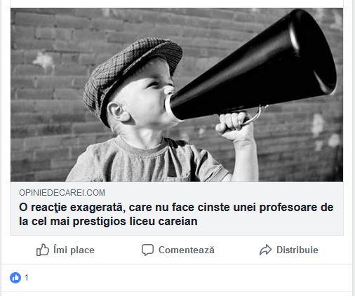 Ruşine! Consilierul personal al primarului din Carei hărţuieşte profesorii de la secţia română a Liceului Teoretic