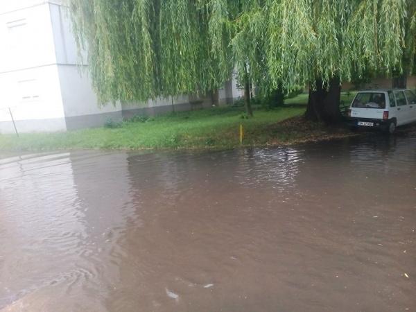 Locuitorii din cartierul Republicii din Carei reclamă canalizare ineficientă