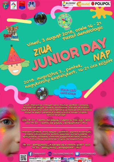 """Programul Festivalului Copiilor """"Junior Day"""" la Carei"""