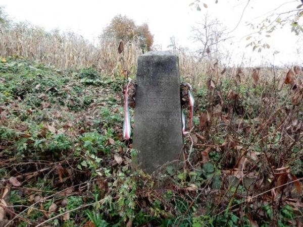 """,,Reabilitarea mormintelor și a operelor comemorative de război din județul Satu Mare"""" un proiect demarat de Consiliul Judeţean"""