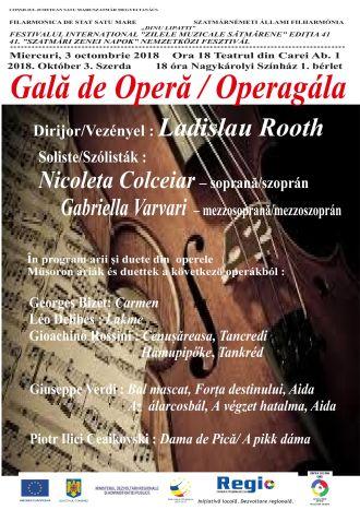 Primul concert al Filarmonicii Dinu Lipatti Satu Mare la Carei