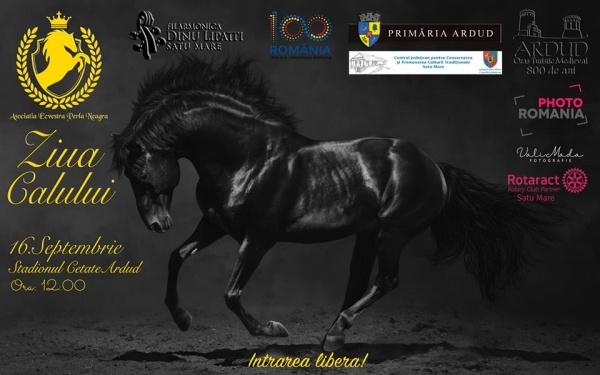 Invitaţie la Ziua Calului la Ardud