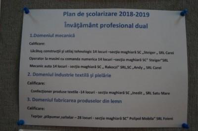 Pentru Grigore Lupu şi Toke Ervin. În Carei nu există clase în limba română pentru învăţământul profesional de tip DUAL