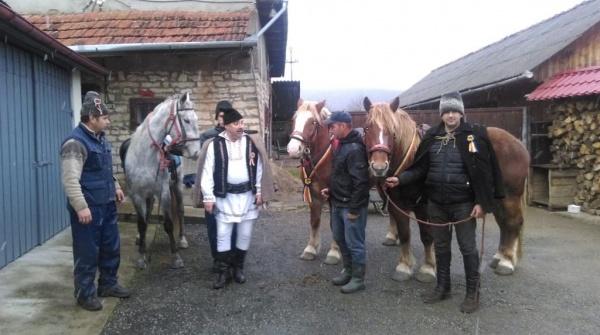 Gesturi frăţeşti în An Centenar! Gospodarii îngrijesc caii sătmărenilor pentru ca ei să se poată odihni