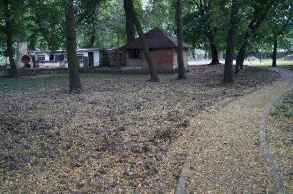 Abuzurile din Parcul Dendrologic Carei. O construcţie ilegală şi o parcelă vândută