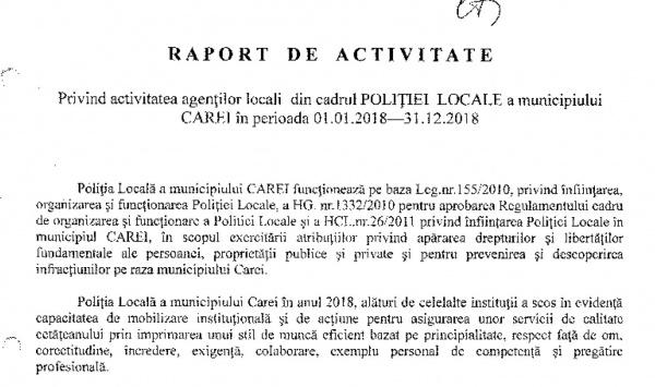 Raportul Anual al Poliției Locale Carei. 16 din cei 21 de angajați au studii medii. Amenzi de peste 75 mii lei