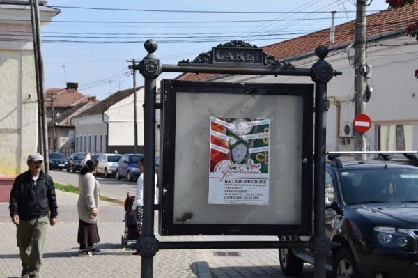 Obrăznicie și provocare continuă la adresa românilor din Carei