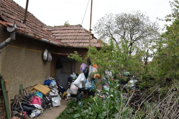 Focar de șobolani pe strada Mihail Kogălniceanu. Primăria Carei nu răspunde la sesizările scrise ale locuitorilor