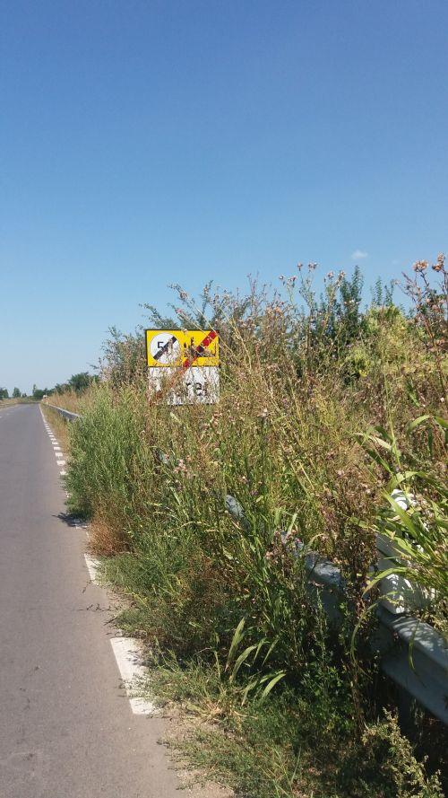 Cine curăță buruienile de pe drumul spre Berveni?