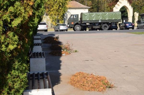 A sosit Armata la Carei. Se curăță zona din jurul Monumentului Ostașului Român ascuns și transformat în loc de joacă