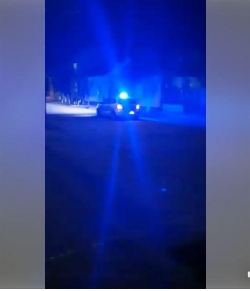 Poliția Municipală Carei la datorie. VIDEO