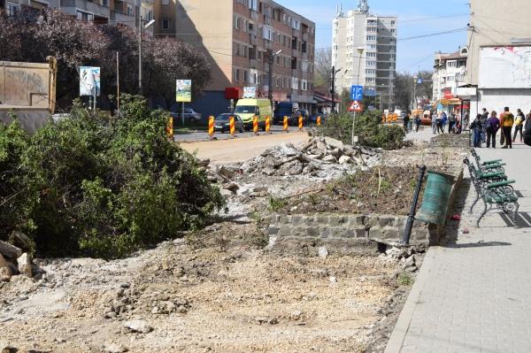S-au scos arbuștii de pe strada Mihai Viteazu