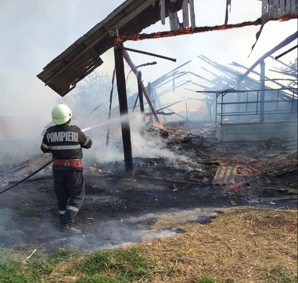 Pompierii careieni au intervenit la Ady Endre