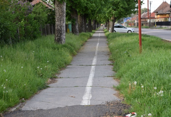 Pista de biciclete de pe strada Viilor care duce la ștrandul termal Carei